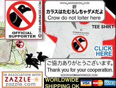 The original No Crows tee shirt in Japan
